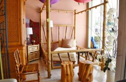 Queen size elephant bamboo canopy bed and Baker chaise